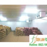 lắp đặt kho lạnh nông sản