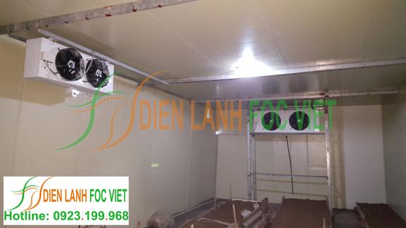 Lắp đặt nhà lạnh nuôi trồng nấm tại Bắc Ninh